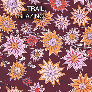 TRAIL BLAZING by Kathy Doughty